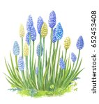 a bush of blue flowers... | Shutterstock . vector #652453408