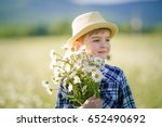 happy childhood.  cute boy in a ... | Shutterstock . vector #652490692