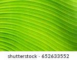 banana leaf | Shutterstock . vector #652633552