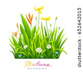 beautiful flowers with green...   Shutterstock .eps vector #652642015
