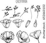 california flower clip art... | Shutterstock .eps vector #652663102