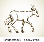 cute blackbuck sheep hind... | Shutterstock .eps vector #652691956