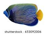 emperor angelfish isolated | Shutterstock .eps vector #653092006