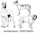 A Set Of Vectors Dogs Drawn By...