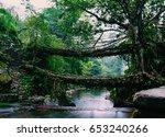 living root bridges of... | Shutterstock . vector #653240266