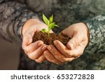 woman mature hands are holding... | Shutterstock . vector #653272828