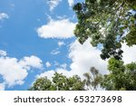 blue sky with white cloud....   Shutterstock . vector #653273698