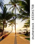 the path to the sea with palm... | Shutterstock . vector #653341708