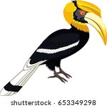 Vector Yellow Billed Hornbill ...