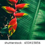 heliconia  tropical vivid color ... | Shutterstock . vector #653415856