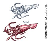 squid seafood isolated sketch.... | Shutterstock .eps vector #653613946