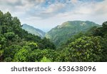 the mountain after raining with ... | Shutterstock . vector #653638096