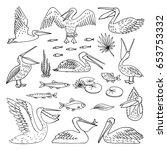 pelican pattern  texture design ...   Shutterstock .eps vector #653753332