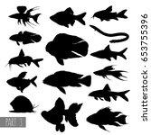 Most Popular Aquarium Fish...