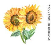 sunflower illustration in... | Shutterstock . vector #653877712
