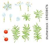 Set Of White  Blue Flowers ...