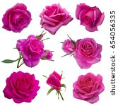 Stock photo collage of pink roses isolated on white background 654056335