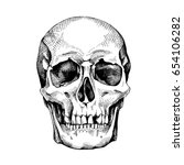 frontal image of the skull.... | Shutterstock .eps vector #654106282