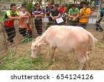 Small photo of Sabah, Malaysia. January 29,2017: Visitors looking at caged albino water buffalo or 'kerbau' displayed during Giawari 2017. Pinkish albinoid water buffalos are very expensive in Tanah Tora, Indonesia.