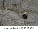 a small pinecone on stone floor | Shutterstock . vector #654132958