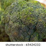 Close up shot on a branch of broccoli - stock photo