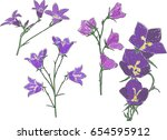 illustration with four lilac... | Shutterstock .eps vector #654595912