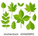 set of green leaves isolated on ... | Shutterstock .eps vector #654600892