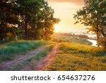 summer landscape road foggy... | Shutterstock . vector #654637276