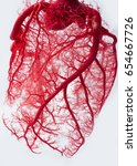 blood vessel system of an heart | Shutterstock . vector #654667726