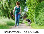 mature woman walking with... | Shutterstock . vector #654723682