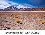 altiplano lagoon miscanti close ... | Shutterstock . vector #65480359