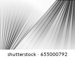 black and white abstract... | Shutterstock . vector #655000792