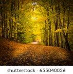 nature | Shutterstock . vector #655040026