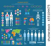 human body infographic with... | Shutterstock .eps vector #655104475