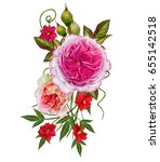 flower arrangement of delicate... | Shutterstock . vector #655142518