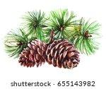 Watercolor Realistic Cones Of...