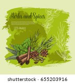 spices and herbs or herbal... | Shutterstock .eps vector #655203916
