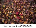 Stacked Leaves
