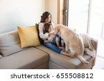 golden retriever junior dog... | Shutterstock . vector #655508812