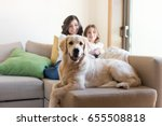 golden retriever junior dog... | Shutterstock . vector #655508818