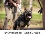 angry working line german... | Shutterstock . vector #655527085