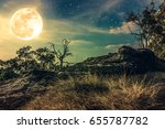 landscape of night sky with... | Shutterstock . vector #655787782