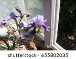 iris flowers  a beautiful... | Shutterstock . vector #655802035