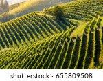 barolo wine region  langhe ...   Shutterstock . vector #655809508