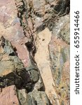 Small photo of The sea Roach bug or sea slater (sea louse) on rough stone background by the beach