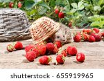 Stock photo a curious hedgehog turned over the basket of strawberries on a wooden walkway near the beds 655919965