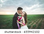 lovely wedding couple  bride... | Shutterstock . vector #655942102