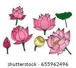 hand drawn lotus flower ... | Shutterstock .eps vector #655962496