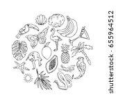 tropic set on white background... | Shutterstock .eps vector #655964512