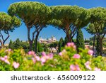 Stock photo altare della patria as seen from rome rose garden in the sunny day with roses and stone pine trees 656009122